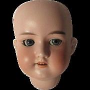 Antique Armand Marseilles  Doll Head 390n DR G M 246/1