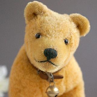 A Big Bear Cub by EDUCA, 1924
