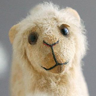 A Dearly Beloved Camel, 1924, by Educa