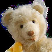 A Big, Long-haired Teddy Bear by Educa