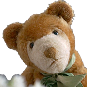 A Rare and Entrancing Cinnamon Colored Teddy Bear by EDUCA