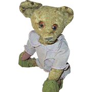 "Antique Sleepy  Celuloid Eye Bear 13"""