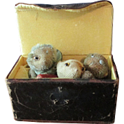 Three Tiny World War 1 Soldier Bears in sewing box