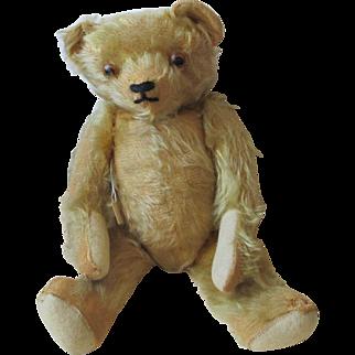 Sweet Mohair Teddy Bear