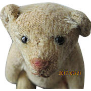 Steiff Antique Rattle Teddy