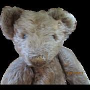 "Pretty 13"" Mohair American Teddy Bear"