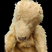 The Saddest Most Pathetic Vintage Mohair Teddy Bear