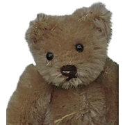 That Face!  Vintage Mini Steiff Heart Breaker Teddy Bear