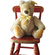 "Adorable 6"" Steiff Teddy with button"