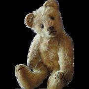 """Steiff Teddy 7"""" Mohair"""