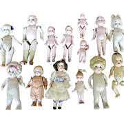 Lot of 14 German and Japan All Bisque Dolls