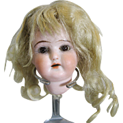 Small Antique German Doll Head wit Original Blonde Mohair Wig