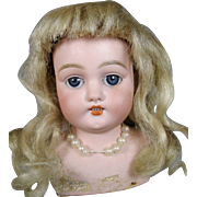 Antique Simon Halbig Bisque Doll Head w Original Blonde Mohair Wig