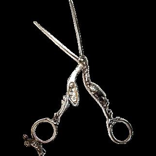 Silver Stork Turtle Scissors, Umbilical Clamp, Ribbon Threader Bodkin, 19th C.