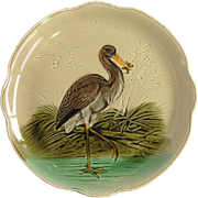 Majolica Bird And Frog
