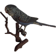 """Vienna Bronze Parakeet  C. Kauba 4"""""""