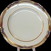"Spode Stafford Blue leaf 9"" Luncheon Plates Set of 18"