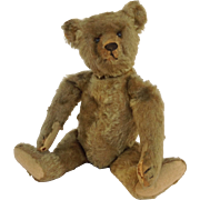 "Steiff Jointed Stuffed 14"" Bear 1908"