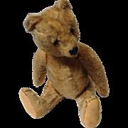 "Steiff Jointed Stuffed 13"" Bear c. 1950"