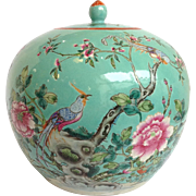 Chinese Ginger Jar 19thc