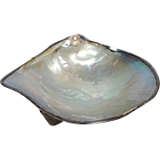Pearl Oyster Shell Dish with Sterling Japanese