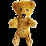 Schuco Teddy Bear Perfume Mohair Gold