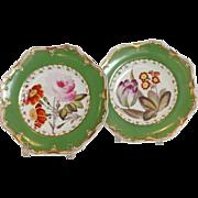 "Spode Feldspar Pair of 9"" Plates Circa 1820"