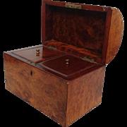 Tea Caddy Domed Burled Walnut  Box Antique