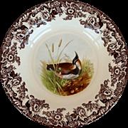 """Spode Woodland Lapwing Pasta Bowl 11 1/2"""""""
