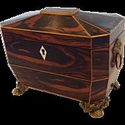 Tea Caddy Coromandel Wood English Early 19th c.