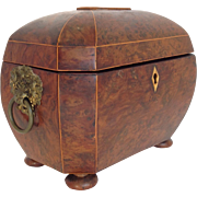 Bombe Tea Caddy Regency Circa 1810
