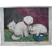 Medium Folio Hand Colored Currier & Ives Print Three White Kittens Peace