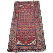 c1890s Antique Hamadan Persian Rug w/People 4' x 7'