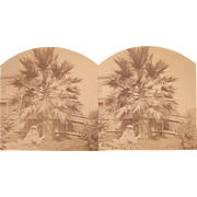 1870s Stereoview San Jose, CA