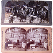 Pair Hunting Stereoviews in Maine