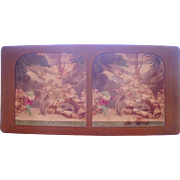 French Hand Colored Tissue Stereoview Diableries #15