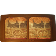 French Hand Colored Tissue Stereoview Diableries #20