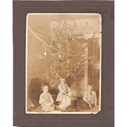 c1910s Large Photo Children in Front of Christmas Tree