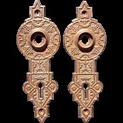 Pair Solid Brass Ornate Victorian Doorplates