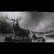 1868 Engraving Stag At Bay by Sir Edwin Landseer