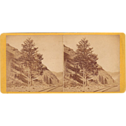 Stereoview 1000 Mile Tree, U.P.RR, Weber Canyon, Utah