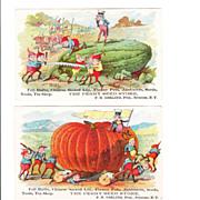 Pair Victorian Brownie Seed Advertising Trade Cards