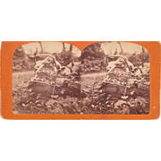 c1880s Stereoview of Pappoose Niagara Falls, NY #690