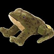 """1950s German Steiff Velveteen Crouching Frog 4 1/4"""""""