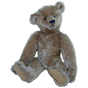"Quirky 13"" 1905 Steiff Blank Button Fully Jointed Teddy Bear"