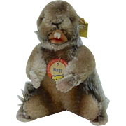 1950's Steiff Nagy Beaver with Full ID and a RSB