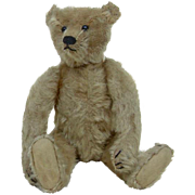 1908 Early Steiff Fully Jointed Teddy Bear No ID