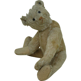 1910-12 Early Shoe button Eye White Steiff Teddy Bear 11.5 inches