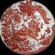 Royal Crown Derby English Bone China , Res Aves