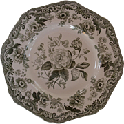 Green Spode Botanical plate